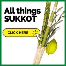 All things Sukkot